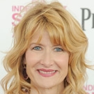 Laura Dern as Director